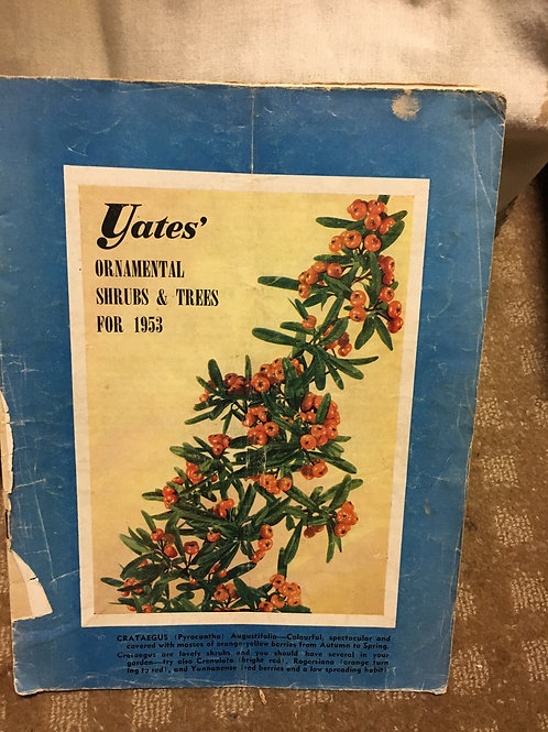 Yates Ornamental Shrubs & Trees for 1953