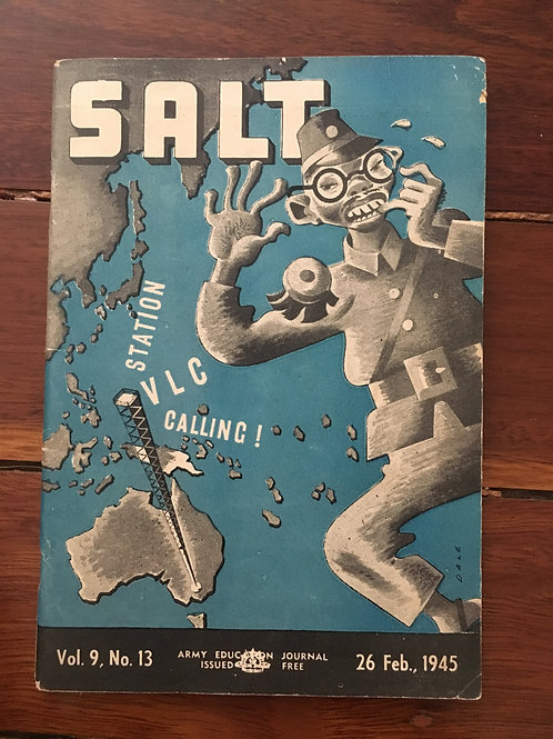 Salt, Vol 9 No13