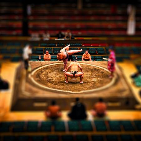 Sumo – Sport, Art, Culture & Rituality