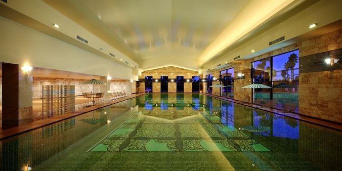 large-public-swimming-pool-3d-model-max.