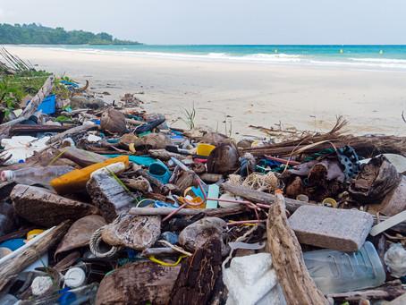 La plasticroute, cette nouvelle forme de pollution des littoraux par les débris plastiques