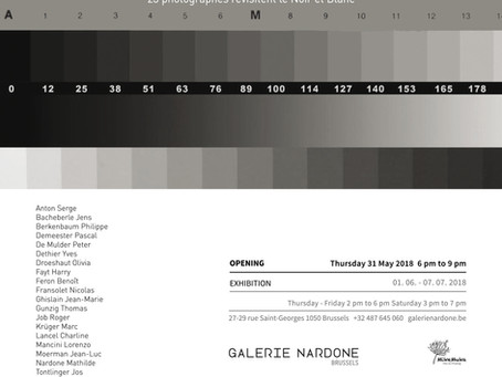 Collective exhibition | Retour au charbon - Galerie Nardone - Brussels