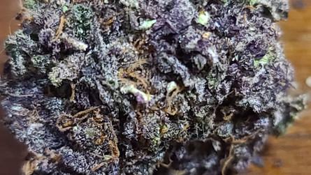 Funeral Cake: Regular Seeds