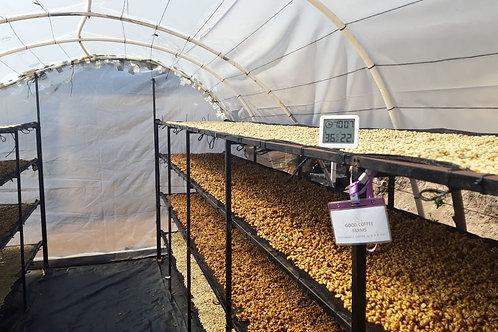 SAN ISIDRO FARM GREEN BEANS PACHE COLIS 1kg SCA89点