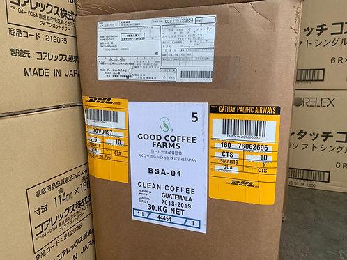 SAN ISIDRO FARM GREEN BEANS PACHE COLIS 1BOX 15kg真空バック×2!SCA89点