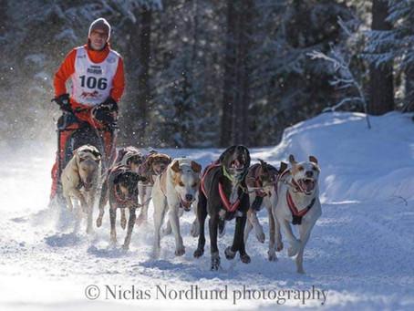 IFSS European Championship Snow 2020