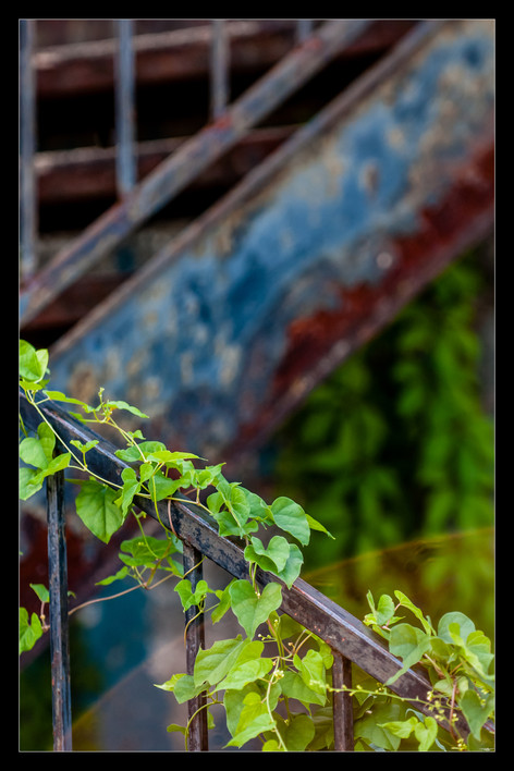 054 Pontotoc stairs-Memphis Photography-