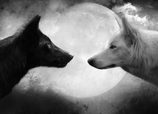 The Parable of the Two Wolves