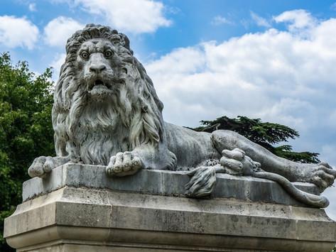 The Lendy Lion