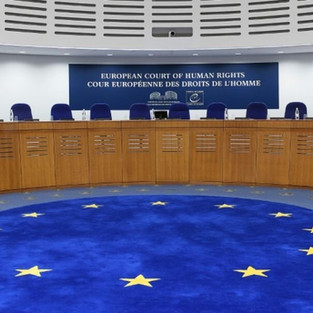Violences policières : la France face à la jurisprudence de la CEDH