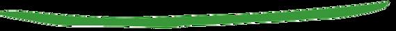 bandeau-lettre info-rubriques-vert.png