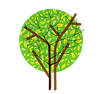 arbre-3-2.png