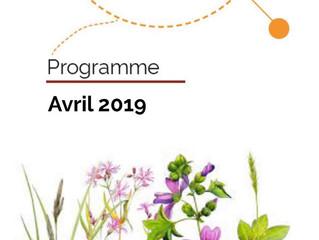 Centre Social Bagatelle: programme avril
