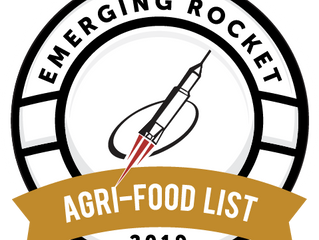 "Skaha Remote Sensing named to 2019 ""Emerging Rocket"" List"