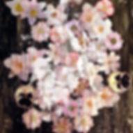 Pierre Ziegler   Zoole   Paintings   Flowerz   Black I