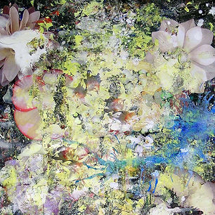 Pierre Ziegler | Zoole | Paintings | Flowerz | K-Roll