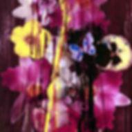 Pierre Ziegler   Zoole   Paintings   Flowerz   Purple