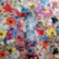 Pierre Ziegler   Zoole   Paintings   Flowerz   White III