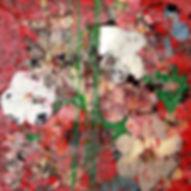 Pierre Ziegler   Zoole   Paintings   Flowerz   Red II