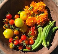 Bowl%2520of%2520flowers%2520and%2520okra