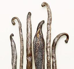 Shemana- Essential Oils -Vanilla