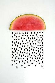 Shemana- botanical oils, plant- based ingredients, natural skincare -Watermelon seed