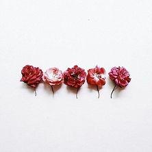 Shemana- Essential Oils -Rose