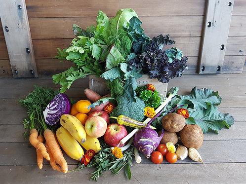 Small - Produce Box