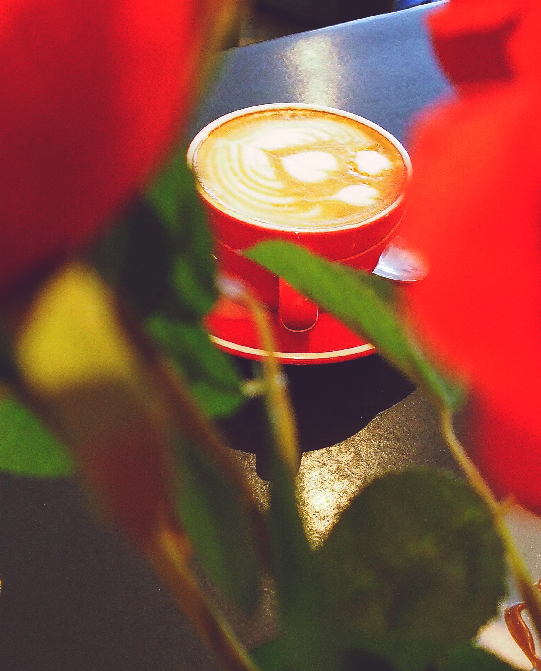 P1010100 peeping coffee