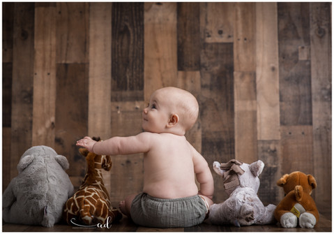 lucas stuffed animals.jpg