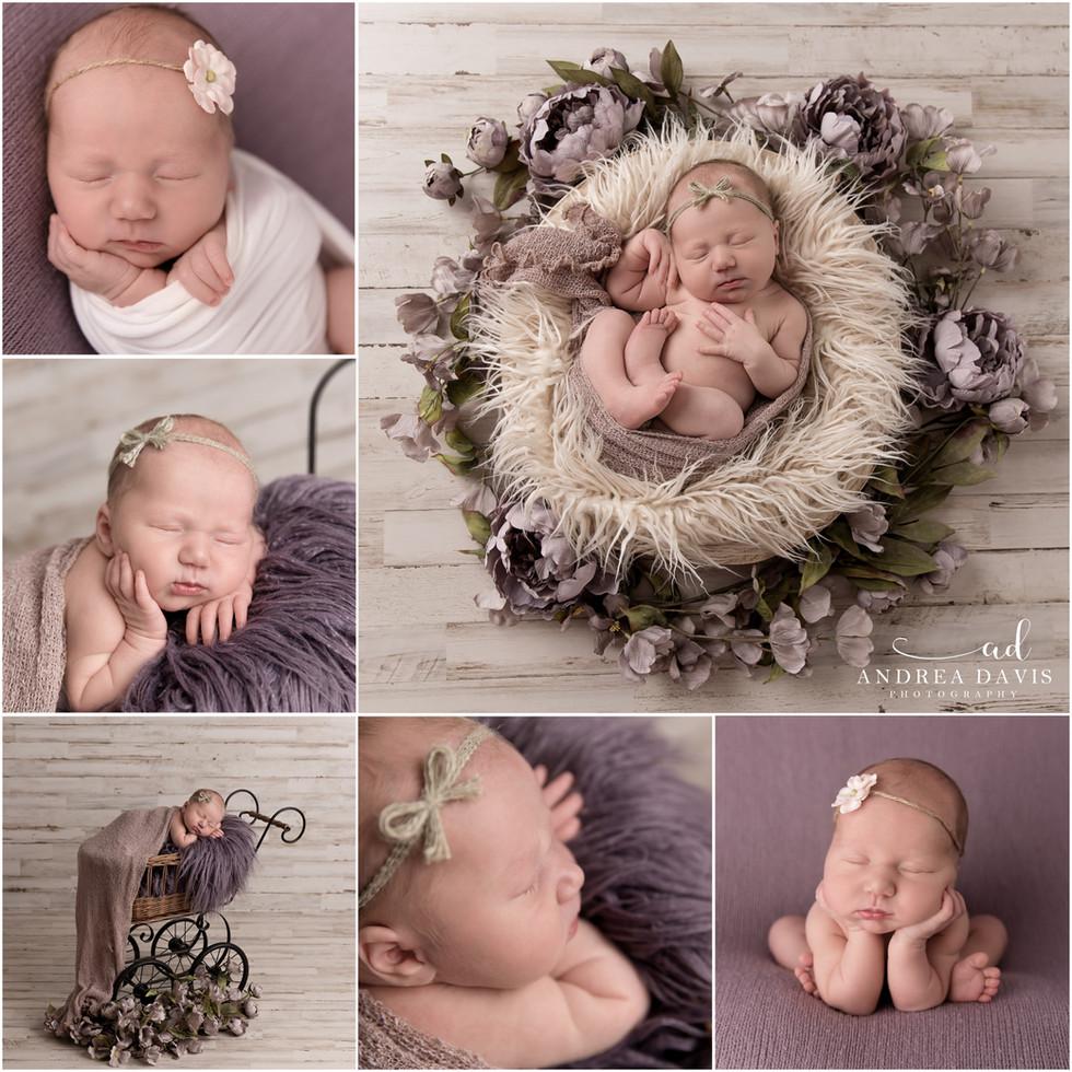 alyssa collage.jpg