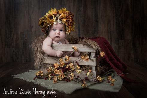 baby photography flowers fall mandeville covington photographer