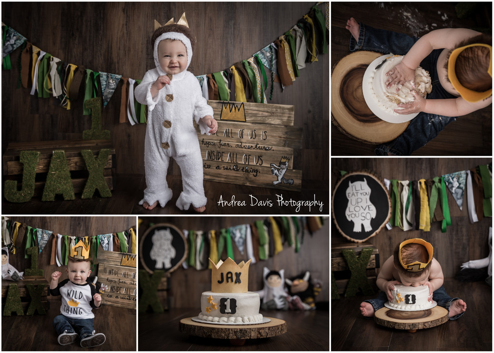 wild one smash cake covington mandeville photography andrea