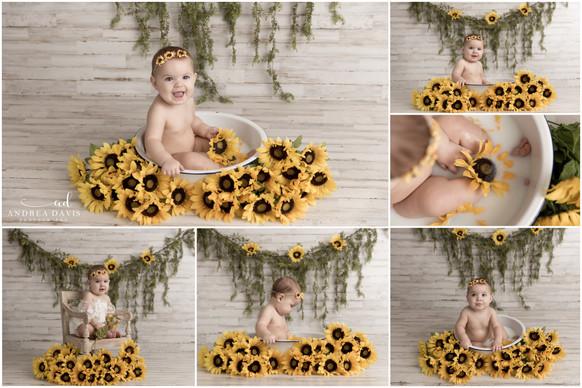 ramsey sunflowers.jpg