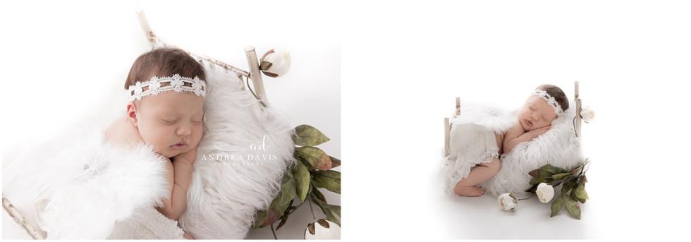 Andrea Davis Photography - Newborn