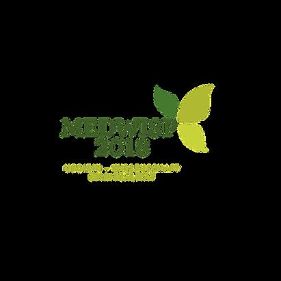 MEDWISP - TRANSPLOGO3.png