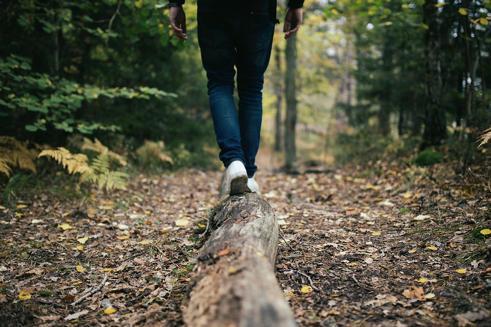 man walking on tree in nature, health, healthy, energy, nutrition