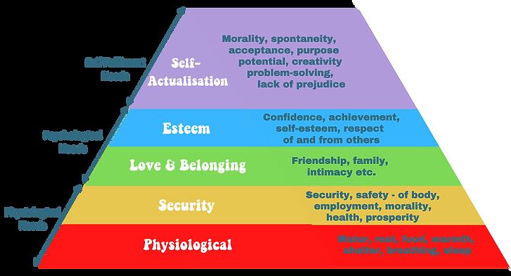 hierarchy bright logo.png