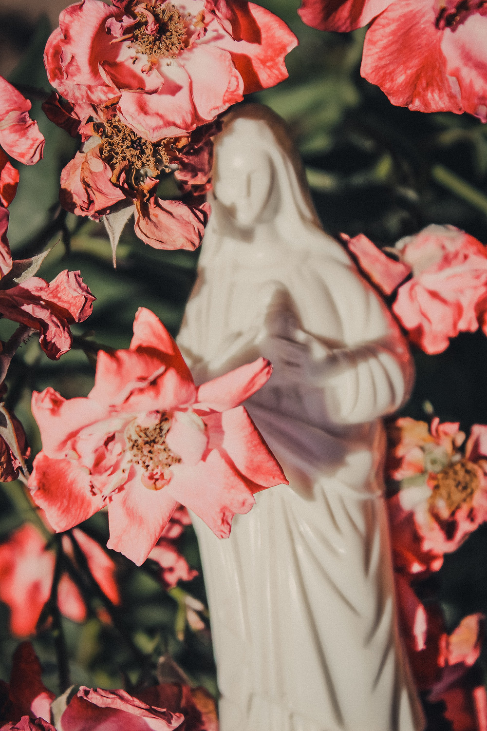 White statue of the Virgin Mary surrounded by delicate pink flowers