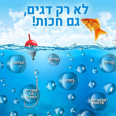 לא-רק-דגים,-גם-חכות.png