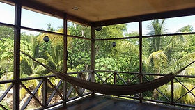 View from shower at Serenity Retreats Belize - A Vegan Resort