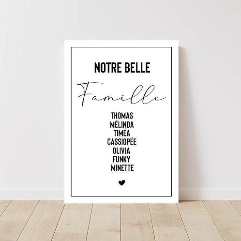 Affiche Belle Famille