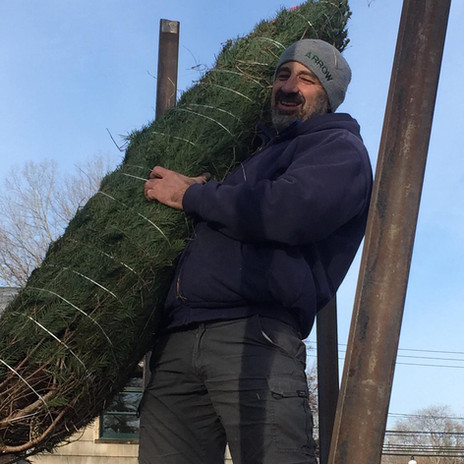 John Tree Delivery