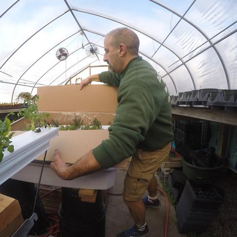 Herb Garden for NBC Today Show