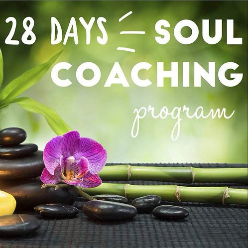 28 Days Soul Coaching Program