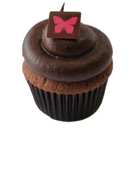 Organic Chocolate Cupcake Baking Mix