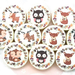 Hand Crafted Woodland Animals Cookie Col