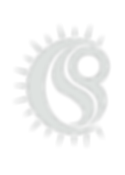 White CPS Logo (Transparent).png