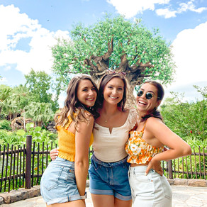 My May Disney Trip