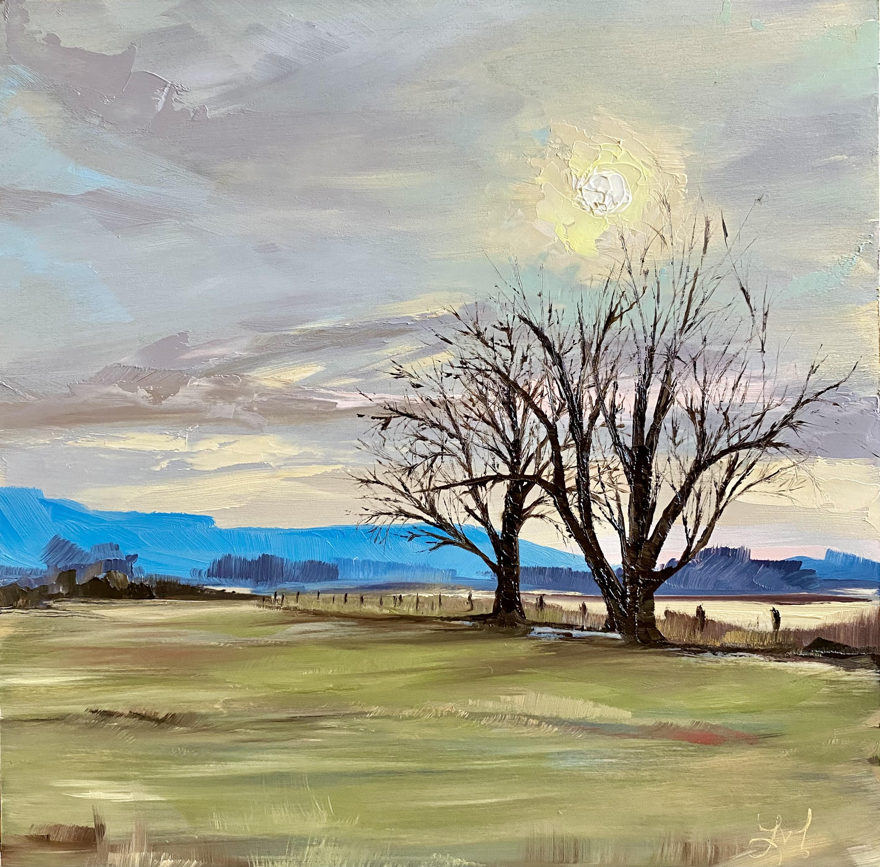 Trees in the Pasture